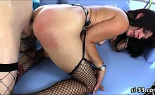 Sultry shemale hotties banging ass holes